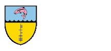 hibernia-college-logo